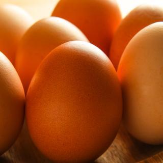 Eier 6-er Pack