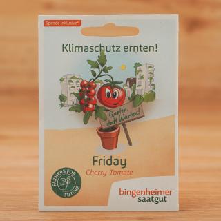 Saat Fridays for Future Klimatomate