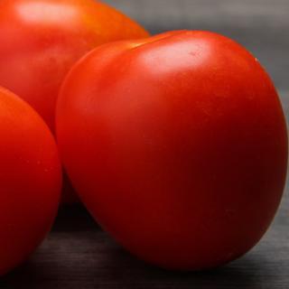 Tomaten Roma