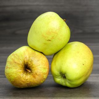 Äpfel Golden Delicious