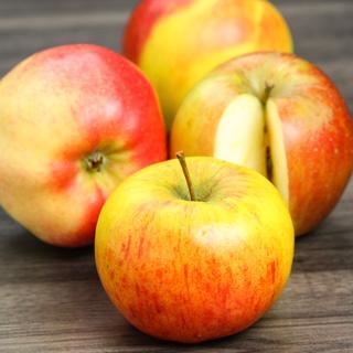 Äpfel Elstar