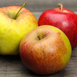 Äpfel bunte Mischung 2,5 kg