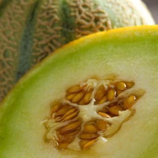 Honigmelone Galia ca. 750 g